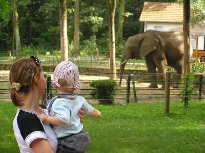 With mummy and an elephant